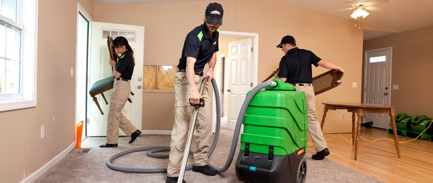 Tampa, FL cleaning services
